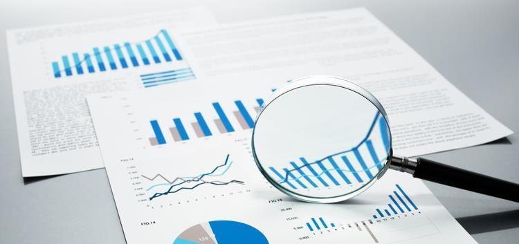project management statistics report