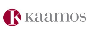 Logotipo de Kaamos Group